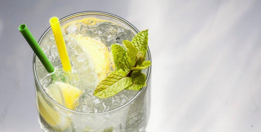 Gin ili džin: mala povijest alkoholnog ljepotana